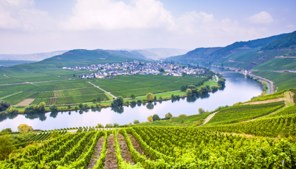 Minicruise Romantische Rhein en Strasbourg (5 dagen)